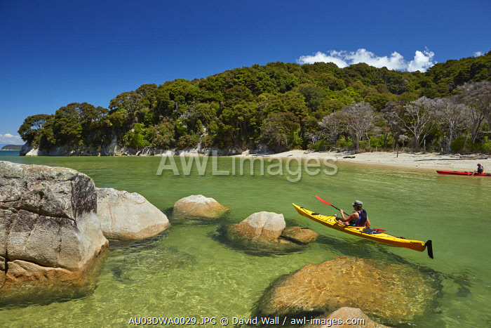 Kayaker, Mosquito Bay, Abel Tasman National Park, Nelson Region, South Island, New Zealand (MR)