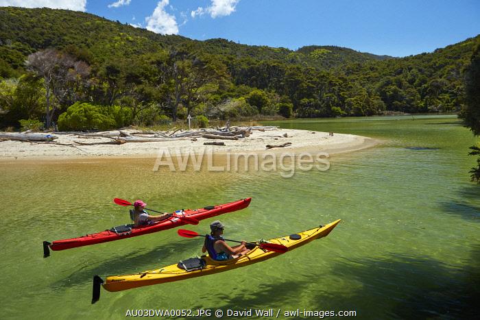 Kayakers, Mosquito Bay, Abel Tasman National Park, Nelson Region, South Island, New Zealand (MR)