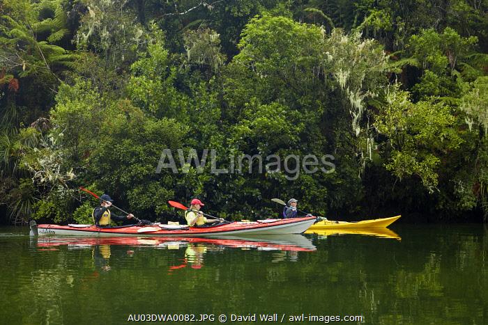 Kayaks, Sandfly Bay Lagoon, Abel Tasman National Park, Nelson Region, South Island, New Zealand (MR)