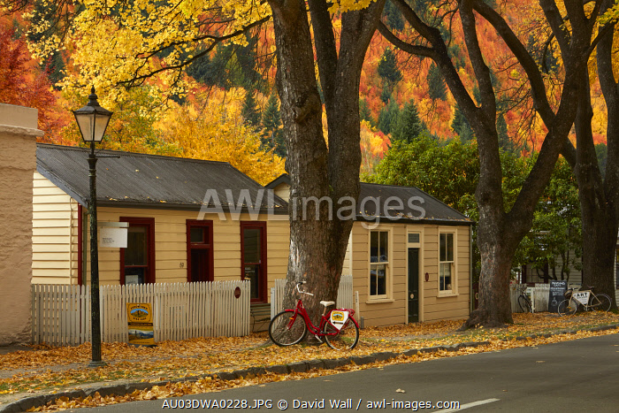 Autumn color and historic cottages, Arrowtown, near Queenstown, Otago, South Island, New Zealand
