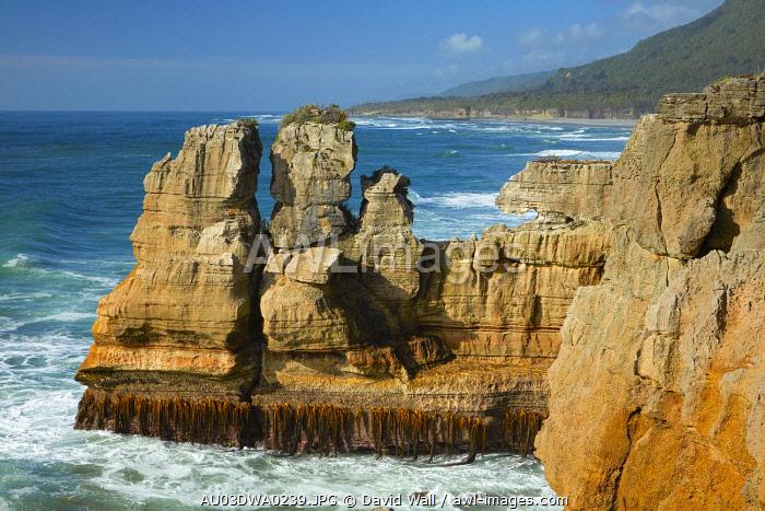 Coastal rock formations, Punakaiki, Paparoa National Park, West Coast, South Island, New Zealand