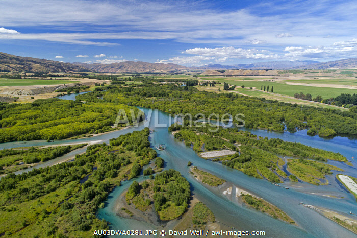 Channels of Clutha River entering Lake Dunstan, Central Otago, South Island, New Zealand