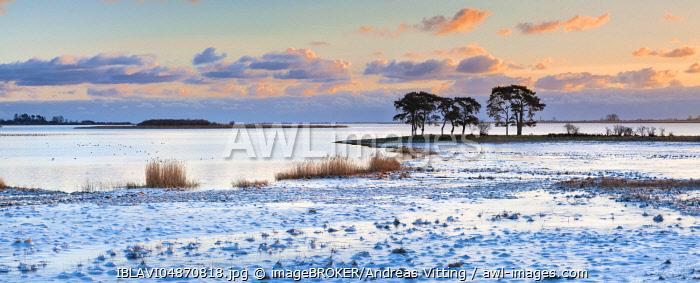 Sunrise at Strelasund between Stralsund and Greifswald in winter, Greifswalder Bodden, Baltic Sea, Mecklenburg-Western Pomerania, Germany, Europe