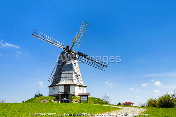 Smock mill, Jerichow, Saxony-Anhalt, Germany, Europe