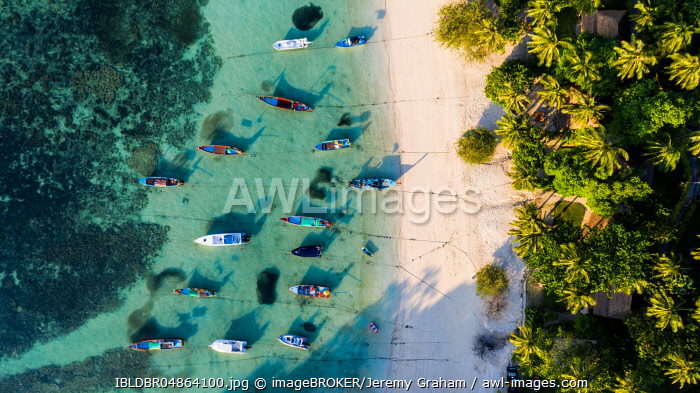 Beach with palmes and boats, Thian Og Bay or Shark Bay, Koh Tao Island, Thailand, Asia
