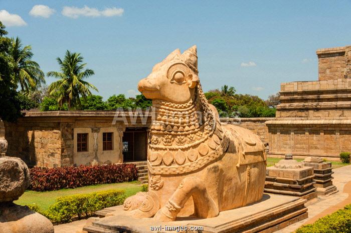 Nandhi bull, Indian deity, Gangaikonda Cholapuram, Ariyalur, Tamil Nadu, India, Asia