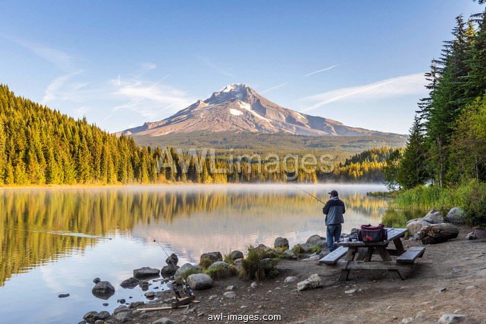 Angler at the lake, Trillium Lake, back volcano Mt. Hood, morning mood, Oregon, USA, North America