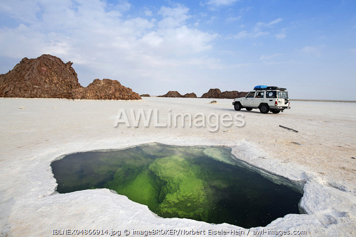 Jeep tour over Lake Karum, source under salt crust in the salt lake, Danakil desert, Ethiopia, Africa