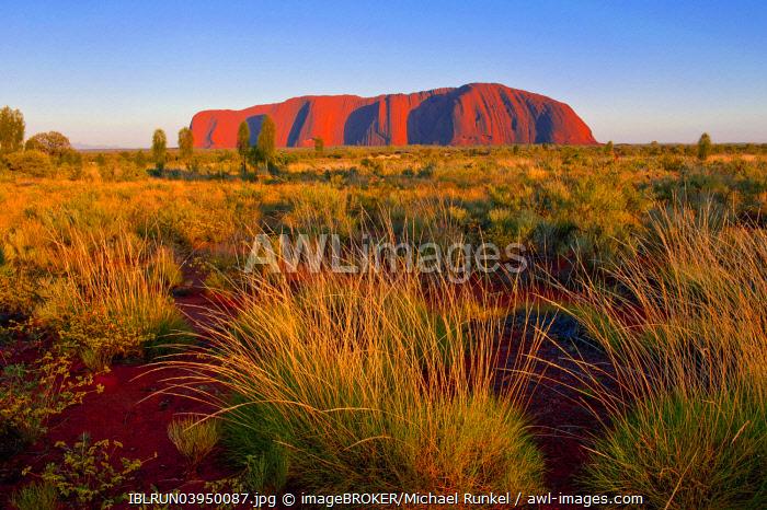Uluru, Ayers Rock, in the late afternoon, Northern Territories, Australia, Oceania