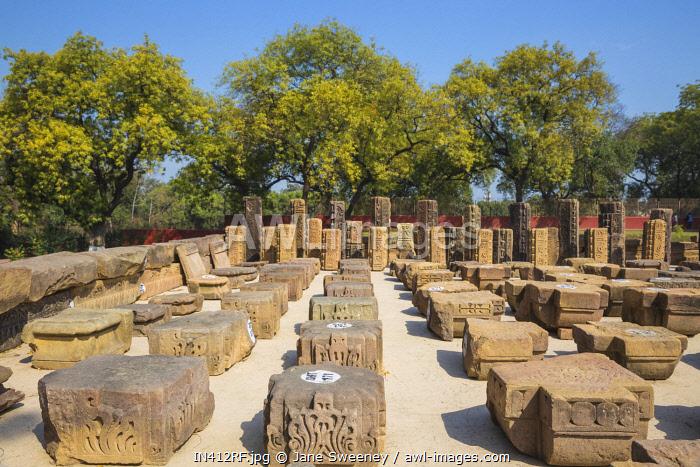 India, Uttar Pradesh, Sarnarth, near Varanasi, Dhamekh Stupa and ruins complex