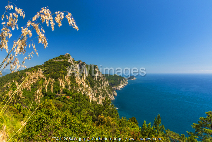 Europe, Italy, Liguria, Cinque Terre. View from the footpath towards Portovenere and the Muzzerone rock.