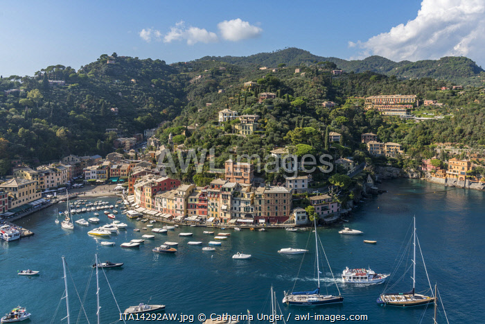 europe, Italy,Liguria. View from the castello Brown down to the picturesque harbour of Portofino