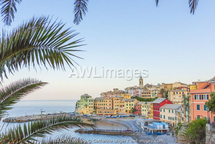 Europe, Italy, Liguria. Bogliasco, little harbour village near Genoa in  morning light.
