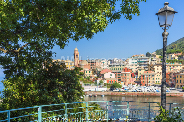 Europe, Italy, Liguria. The colorful little town of Nervi, part of Genoa, seen from the promenade Anita Garibaldi.