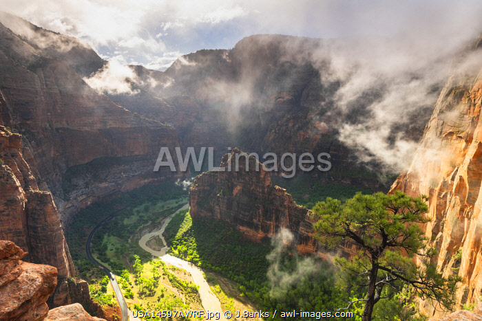 awl-images.com - USA / View from Angels landing Zion National Park, Utah, USA