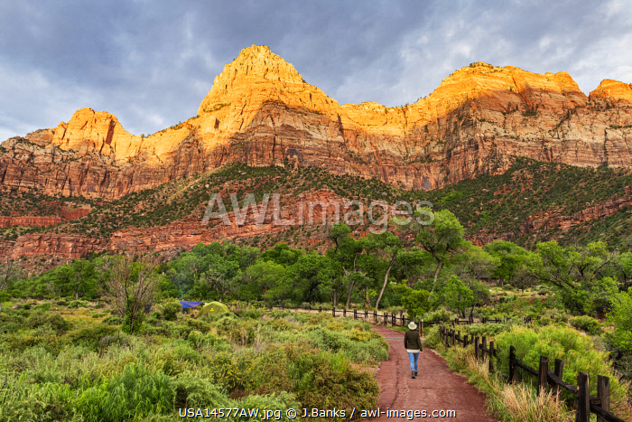 awl-images.com - USA / Woman walking the Pa'rus Trail Zion National Park, Utah, USA