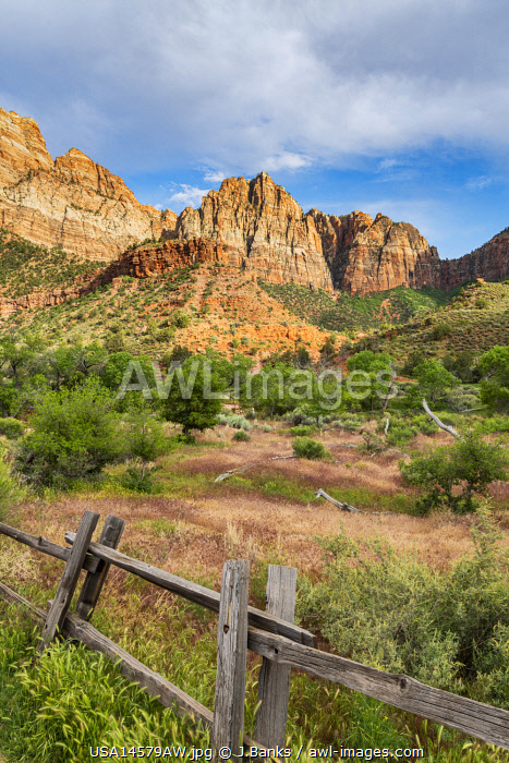 awl-images.com - USA / Pa'rus Trail Zion National Park, Utah, USA