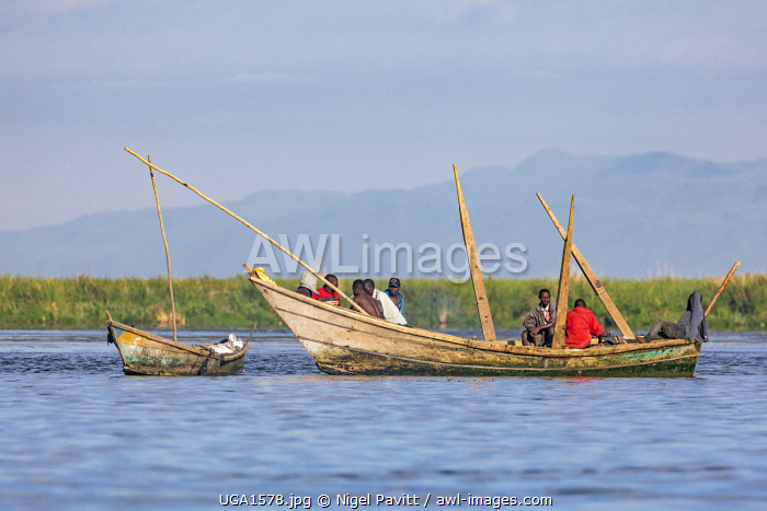awl-images.com - Uganda / Uganda, Western Uganda, Ntoroko District, Lake Albert. Fishermen in locally-made wooden fishing boats fish with nets in the rich fishing grounds in the far south of Lake Albert which lies on the Uganda-Congo DRC border.