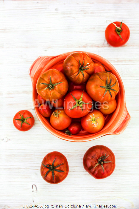 awl-images.com - Italy / Various kinds of red tomatoes in a round plate. These include the Beefsteak or Buffalo Tomato, Heirloom Tomato and Tomatoes on the Vine.
