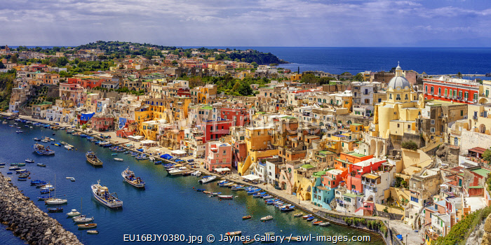 Europe, Italy, Procida. Panoramic of town and marina