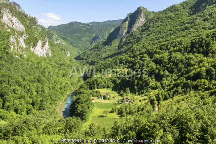 awl-images.com - Montenegro / Montenegro, region of Durmitor, Tara Canyon from Durdevika Bridge