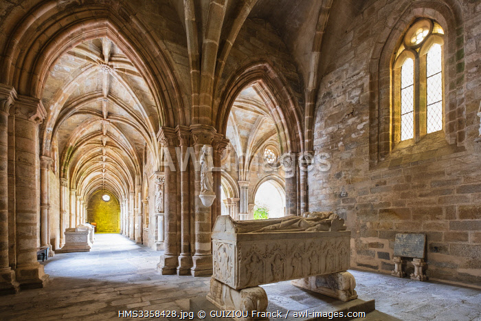 awl-images.com - Portugal / Portugal, Alentejo region, Evora, UNESCO World Heritage site, Nossa Senhora da Assunç�A?o Basilica (or Sé Cathedral) built betweenen 1186 and 1250, the 14th century cloister