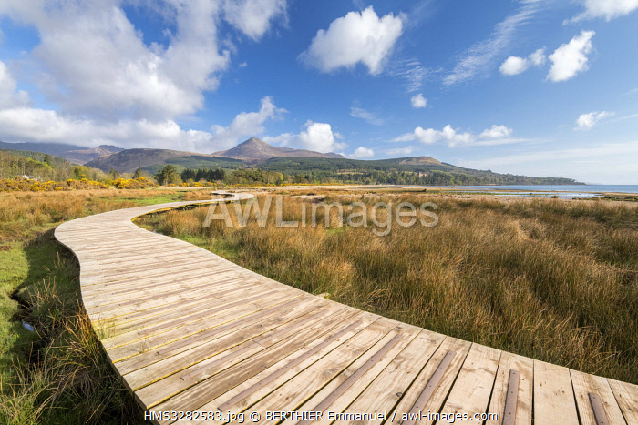 awl-images.com - Scotland / United Kingdom, Scotland, North Ayrshire, Arran island, Brodick, wood path along the coast