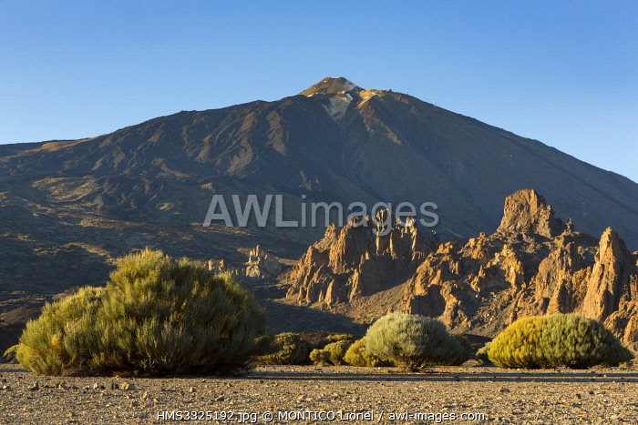 awl-images.com - Spain / Spain, Canary Islands, Tenerife island, Parque Nacional del Teide (Teide National Park) listed as World Heritage by UNESCO, vegetation and rocks down to the Teide volcano