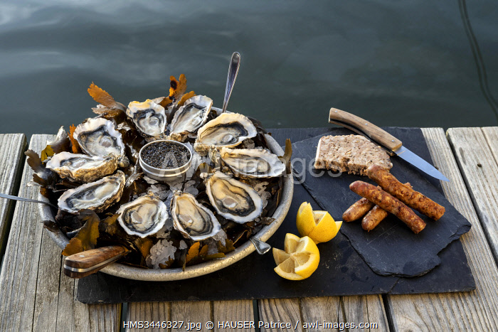 awl-images.com - France / France, Gironde, Bassin d'Arcachon, Oyster platter with local caviar, pate and sausages