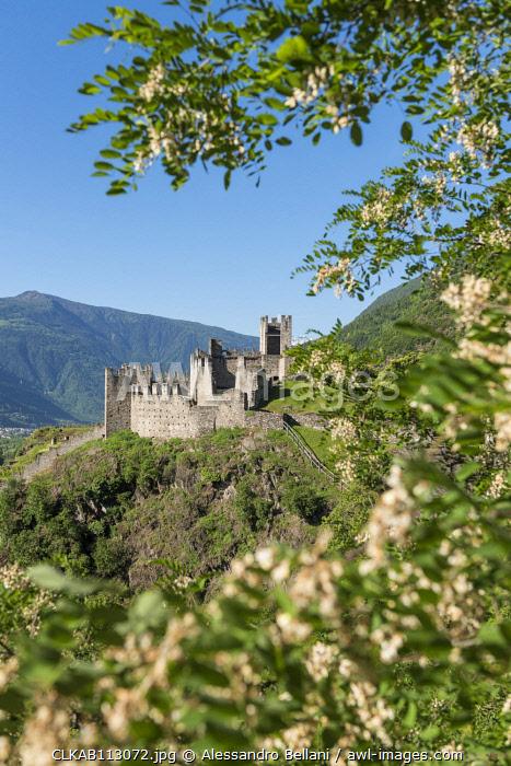 The Castle Visconti Venosta of Grosio, Province of Sondrio, Valtellina, Europe