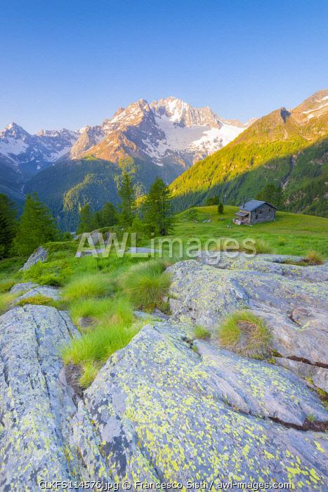 Alpe dell Oro, Valmalenco, Valtellina, province of Sondrio, Lombardy, Italian alps, Italy
