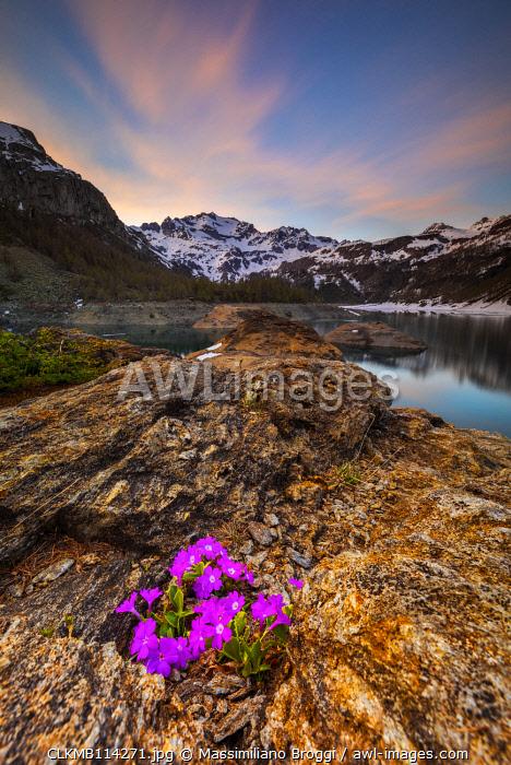 Codelago at sunset, Parco Naturale dell'Alpe Veglia e dell'Alpe Devero, Verbano Cusio Ossola, Piemonte, Italy, Southern Europe