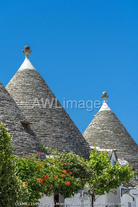 Alberobello, province of Bari, Apulia, Italy, Europe. The typical Trulli huts