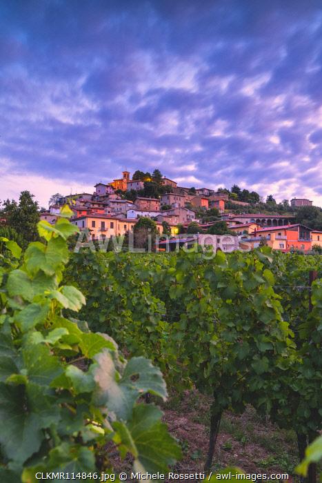 Corte de Lantieri winery, Brescia province, Lombardy district, Italy Europe