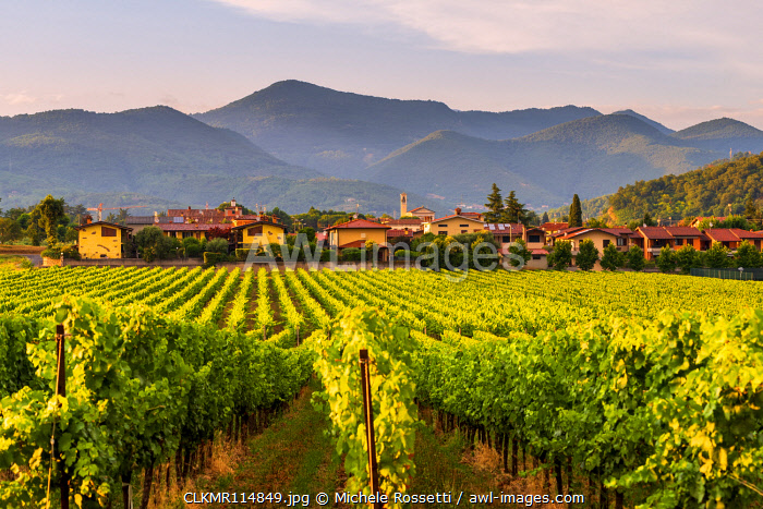 The village of Camignone at sunset in franciacorta, Brescia province, Lombardy district, Italy.