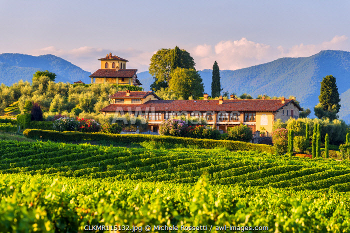 Landscapes and vineyards of the Franciacorta at sunset in Brescia province, Lombardy district, Italy, Europe
