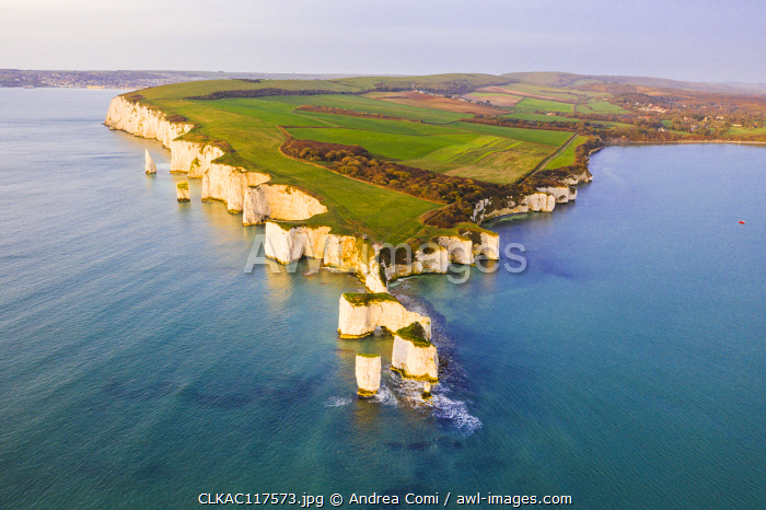 Aerial view of Old Harry Rocks, Handfast Point, Isle of Purbeck, Jurassic Coast, Dorset, England, UK