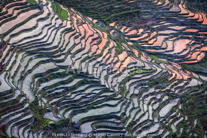 Bada rice terraces in yuanyang rice terraces area, Yunnan, Southern China, China