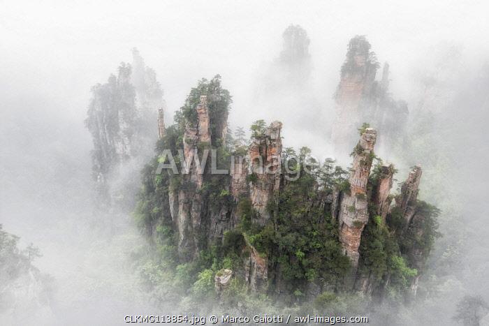 Tianzi mountain in the mist at sunrise, Zhangjiajie national forest park, Hunan, China