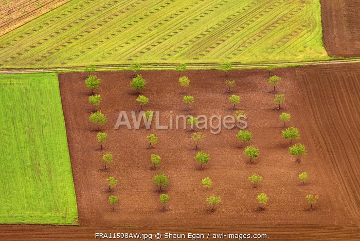 France, Dordogne, Domme, overview of farmland