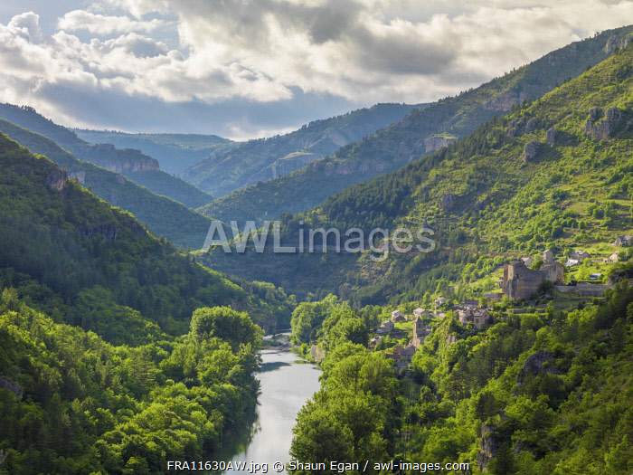 France, Lozere, Longuedoc-Roussillon, Gorges du Tarn, overview