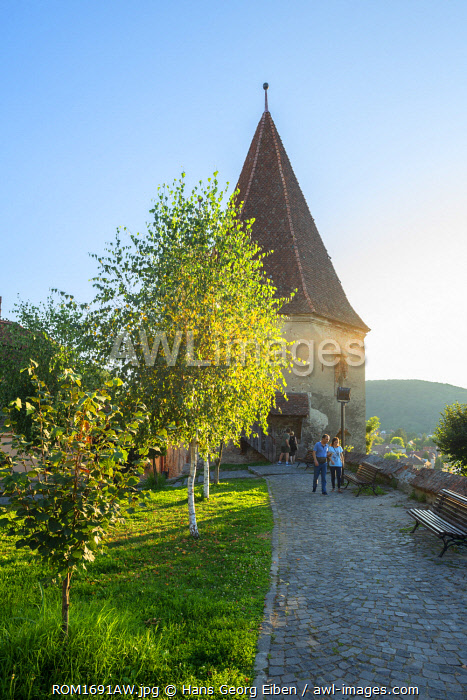 Cobbiers tower, Sighisoara, Transylvania, Romania