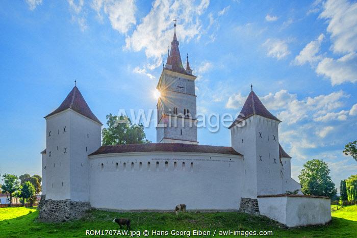 Fortified church of Harman, Transylvania, Romania