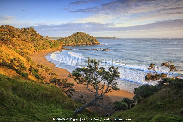 Sunrise at Daisy Bay, Matapouri, New Zealand