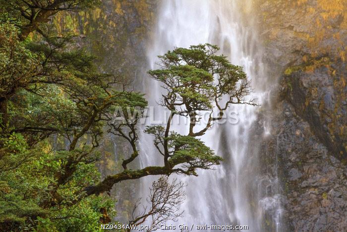 Devils Punchbowl Falls, near Arhurs Pass, new Zealand