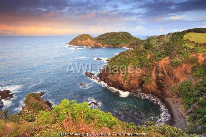 Matapouri Coast, Northland, New Zealand