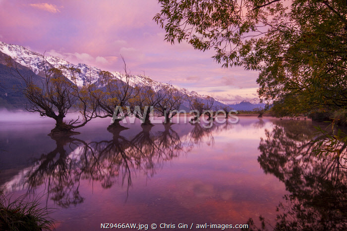Sunrise at Glenorchy, Otago, New Zealand