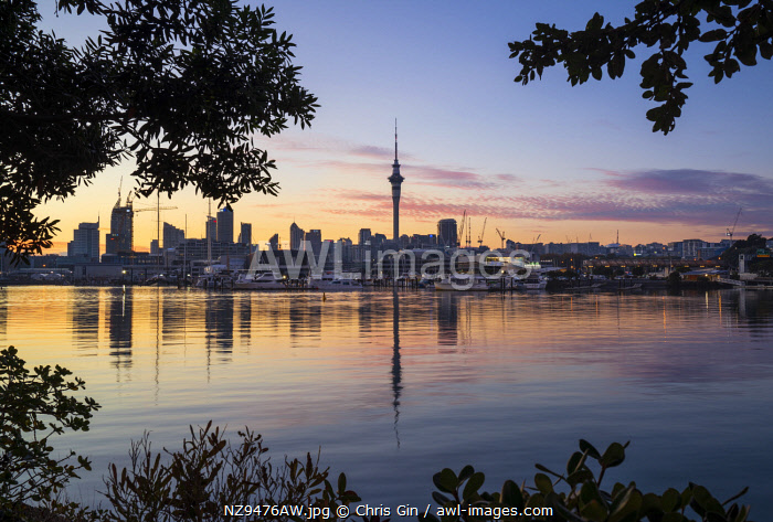 Sunrise from Westhaven marina, Auckland, New Zealand