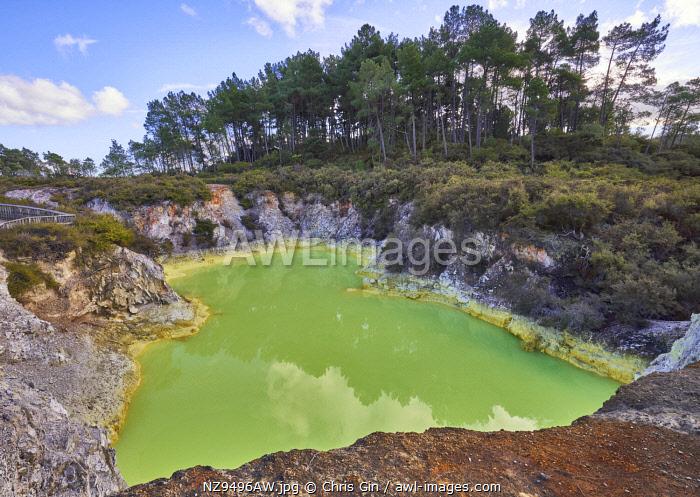 Devils Bath, Rotorua, New Zealand