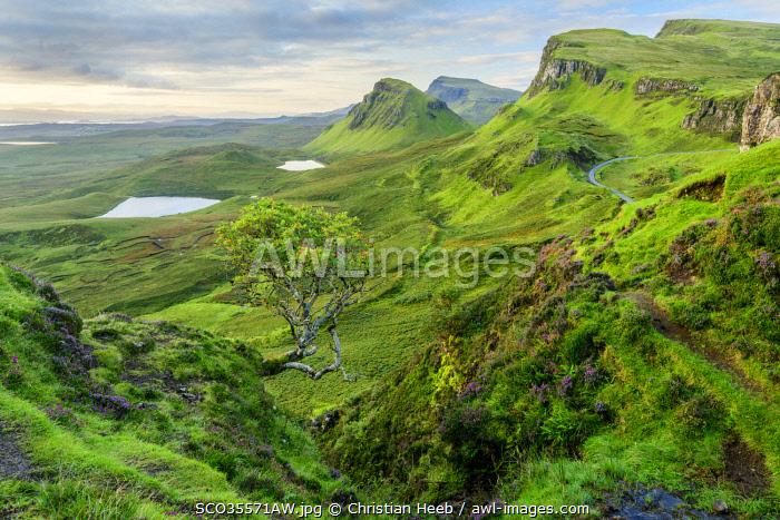 United Kingdon, Scotland, Isle of Skye, Quiraing escarpment